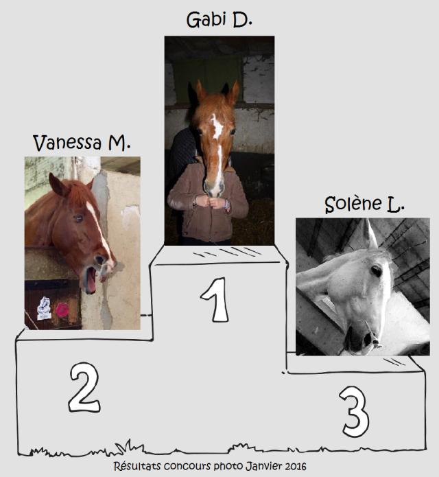 Résultats concours photo janvier 2016